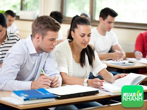 Kinh nghiệm tự ôn và luyện thi TOEFL iBT