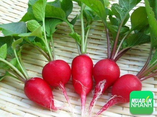 7 loại thực phẩm tốt nhất cho gan - rể củ cải đường